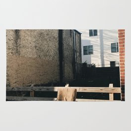 lone chair, south philly Rug