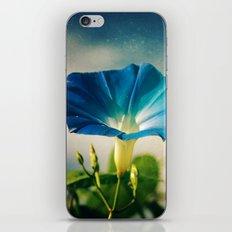 Hello Morning Glory iPhone & iPod Skin