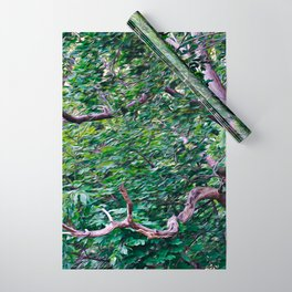 An Old Branch Wrapping Paper