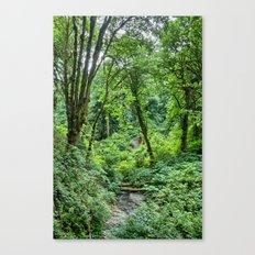 Tranquil Stream Canvas Print