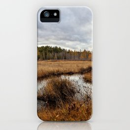autumn marsh iPhone Case