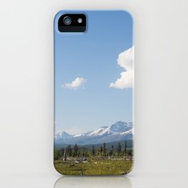 Barren and Few iPhone Case
