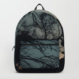 Coles Bay Summer Night Backpack