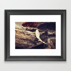 Beach Feathers Framed Art Print
