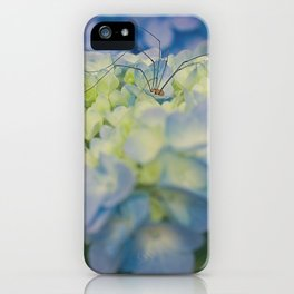 Granddaddy sleeping in the blue hydrangea iPhone Case