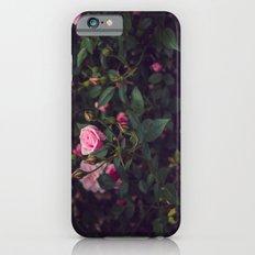 Sweet Summertime III iPhone 6s Slim Case