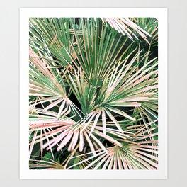 Palms #nature #painting Art Print