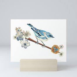Cerulean Warbler Mini Art Print