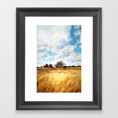 the homestead. Framed Art Print