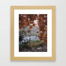 Portland fall Framed Art Print