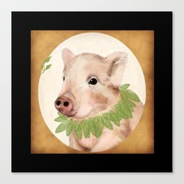 bayleaves and boar Canvas Print