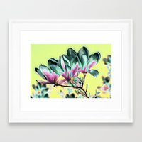 aelwen Framed Art Prints featuring MAGNOLIA - PopArt by CAPTAINSILVA