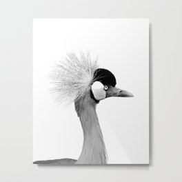 Exotic Crowned Crane Metal Print