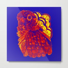 Sunset Conure Metal Print