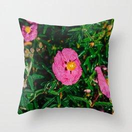 Carmel Blooms III Throw Pillow
