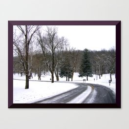 Winter Sleep at Butler Park Canvas Print