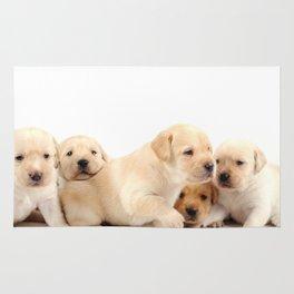 Puppies Labrador Retriever Rug