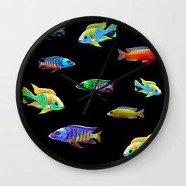 African Cichlid School Aquarium Fish Lovers Wall Clock