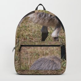 Baby Ostrich Backpack