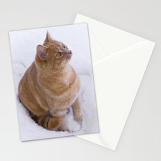 Kitten Discovers Snow! Stationery Cards