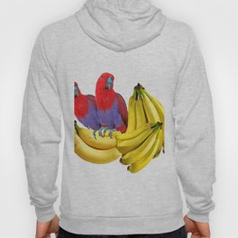 FANCY COLORED RED TROPICAL BIRDS & BANANAS Hoody