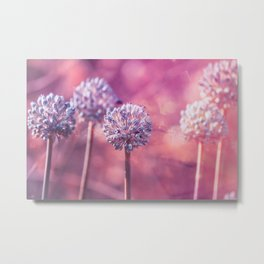 Delicate Morning Metal Print