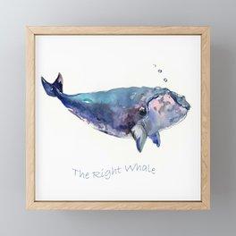 Rigth Whale artwork Framed Mini Art Print