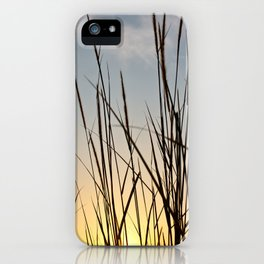 Wonderful sunset with teasel iPhone Case