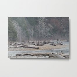Pachena Driftwood Metal Print