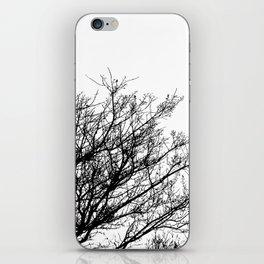Black Trees  iPhone Skin