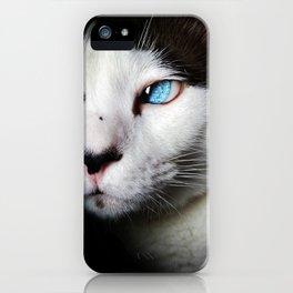 Cat siamese blue eyes iPhone Case