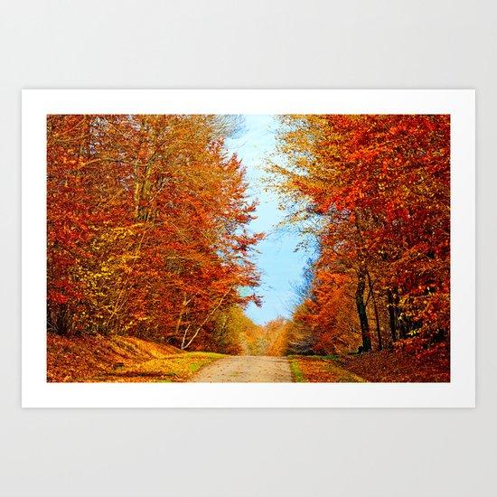Through the fall Art Print