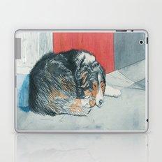 Sleeping Boder Collie Laptop & iPad Skin