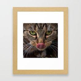 Lick! Framed Art Print