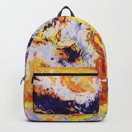 Salek Backpack