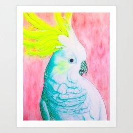 Cockatoo Dreams Art Print