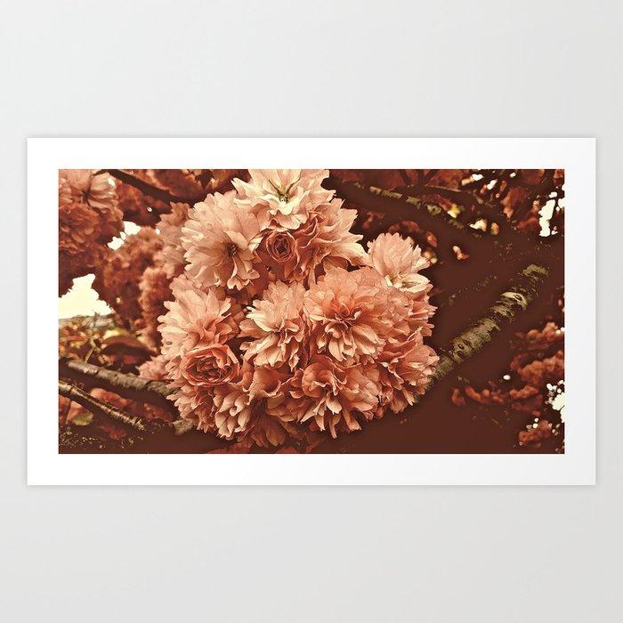 Vintage Ornamental Plum Blossoms Art Print