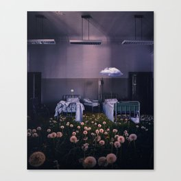 hope and neglect Canvas Print