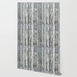 RUSTIC WESTERN BARN WOOD Wallpaper