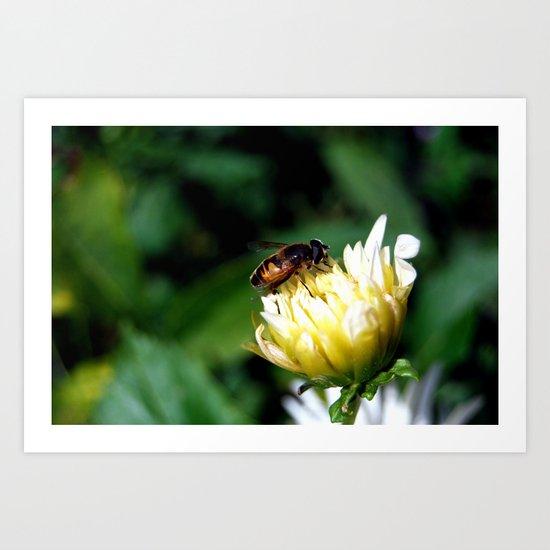 The Bee Art Print
