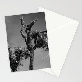 Joshua Tree National Park XXV Stationery Cards