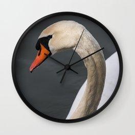 Mute Swan in Winter Wall Clock
