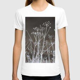 Midnight Field T-shirt