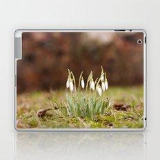Hello Spring II Laptop & iPad Skin