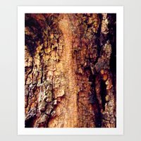 Close to Nature Art Print