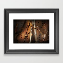 fire sunset tree buds Framed Art Print