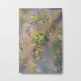 Pastel Blue and Green Botanical Metal Print
