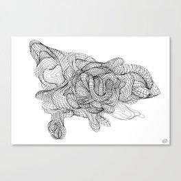 Morfo Canvas Print