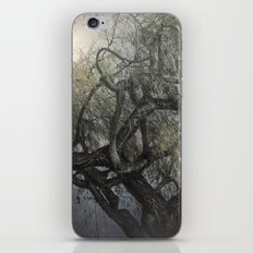 The Whispering Tree iPhone & iPod Skin