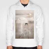 seahorse Hoodies featuring Seahorse by Laake-Photos